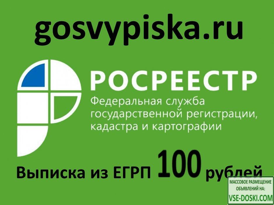 Выписка РОСРЕЕСТРА из ЕГРН заказать за 100 рублей gosvypiska.ru