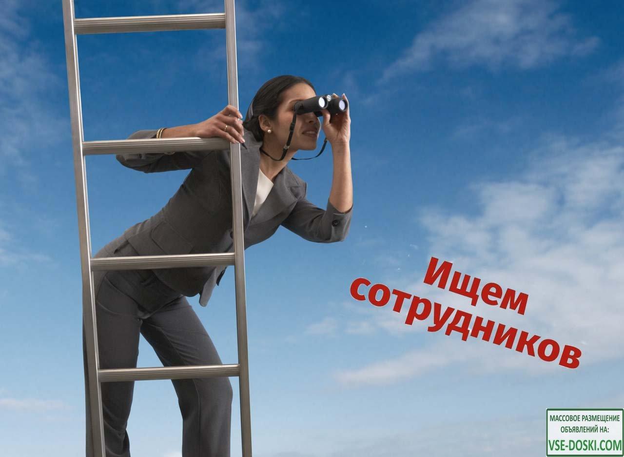 Оператор отдела маркетинга