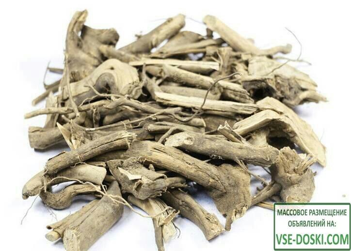 Диморфант кора корни калопанакс от Земли Дальневосточного Леопарда