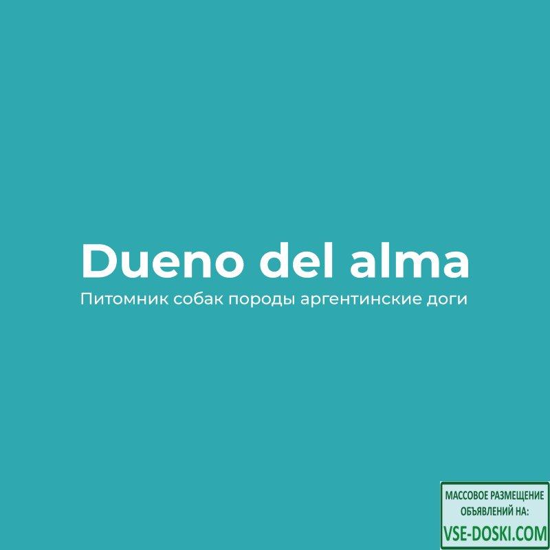 Dueño del Alma Питомник собак породы аргентинские доги