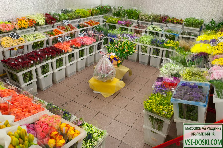 Отдел продажи цветов 15 м2 в торговом центре